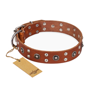 """Silver Elegance"" FDT Artisan Decorated Leather English Pointer Collar with Old Silver-Like Plated Studs and Cones"