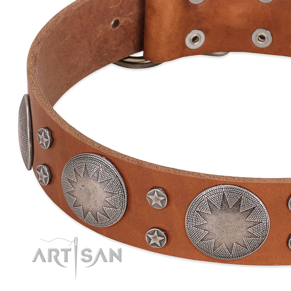 Best quality genuine leather dog collar for your attractive four-legged friend