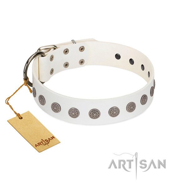 Stylish design full grain leather collar for your canine