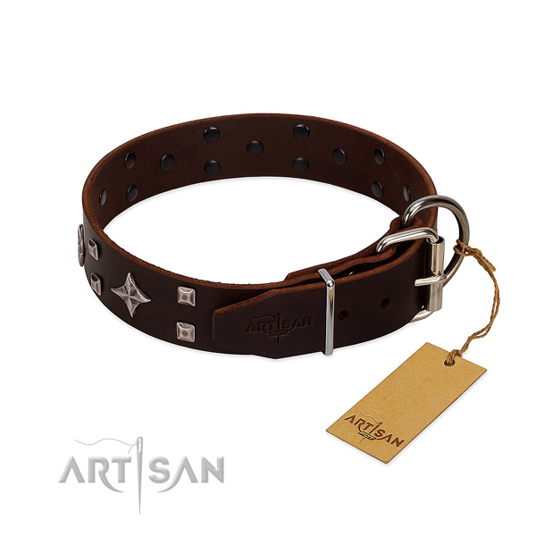 Trendy genuine leather collar for your four-legged friend stylish walks