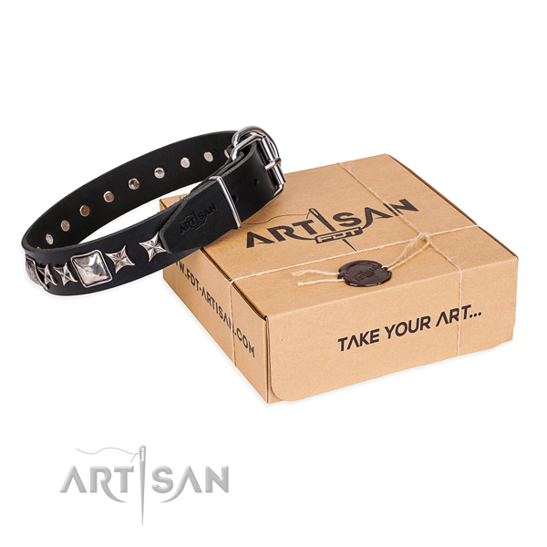 Fancy walking dog collar of top quality natural leather with studs