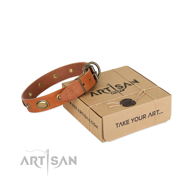Studded full grain natural leather collar for your beautiful canine