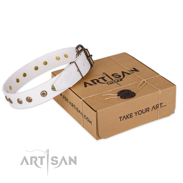Durable traditional buckle on genuine leather collar for your impressive dog
