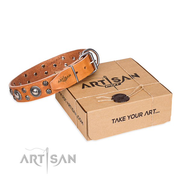 Basic training dog collar of finest quality full grain genuine leather with adornments