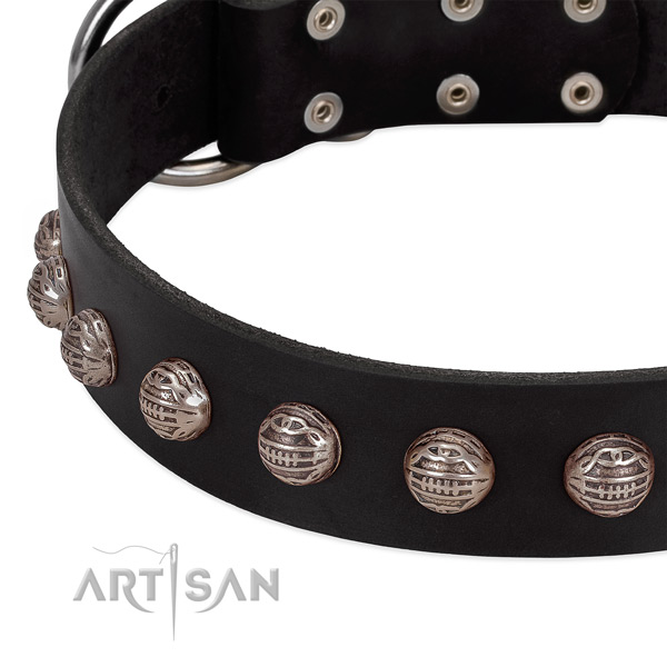 Full grain natural leather collar with remarkable embellishments for your dog