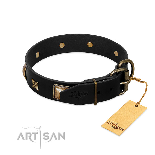 Corrosion resistant fittings on leather collar for walking your doggie