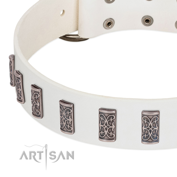 Fashionable full grain natural leather collar for your canine walking