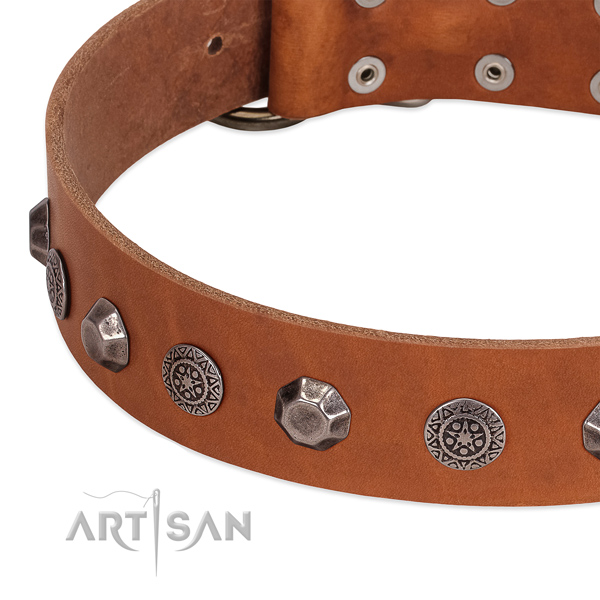 Stunning genuine leather collar for your doggie stylish walking