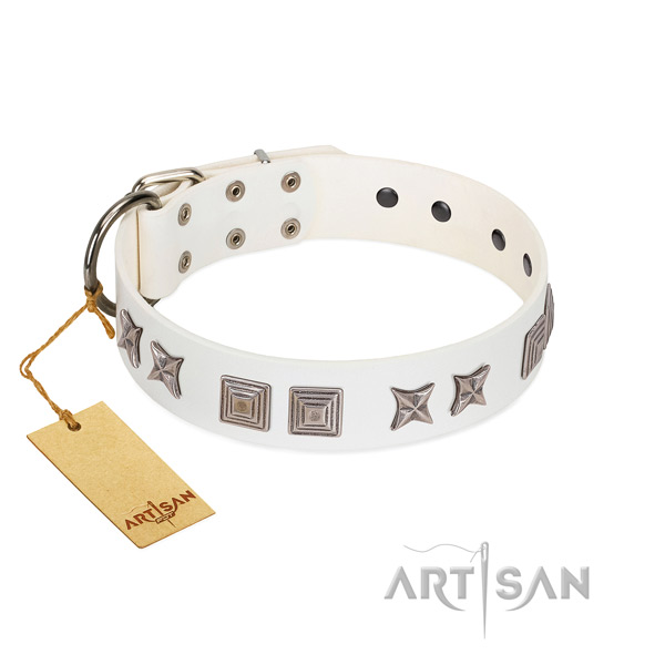 Leather dog collar with extraordinary studs handcrafted canine