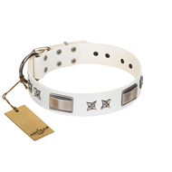 """Bling-Bling"" FDT Artisan White Leather English Pointer Collar with Sparkling Stars and Plates"
