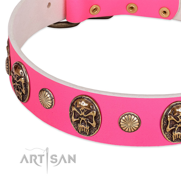Durable decorations on full grain leather dog collar for your doggie
