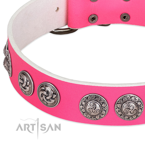 Trendy genuine leather dog collar for walking