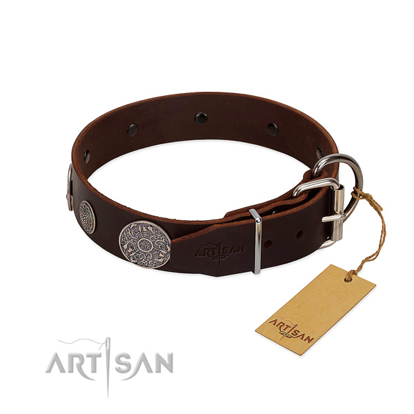 Adorned genuine leather collar for your lovely four-legged friend
