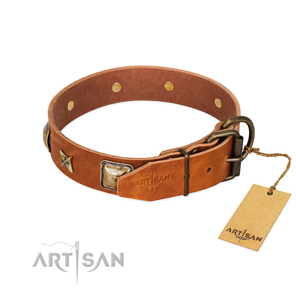 Full grain natural leather dog collar with corrosion proof fittings and studs