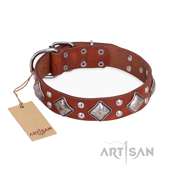 Daily use incredible dog collar with rust-proof fittings