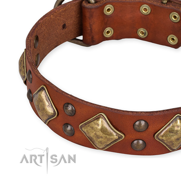 Full grain natural leather collar with corrosion resistant D-ring for your attractive doggie