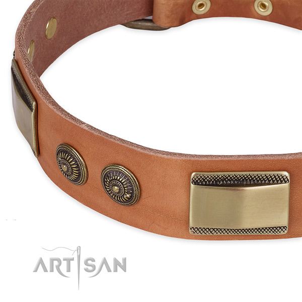 Top notch full grain leather collar for your handsome canine