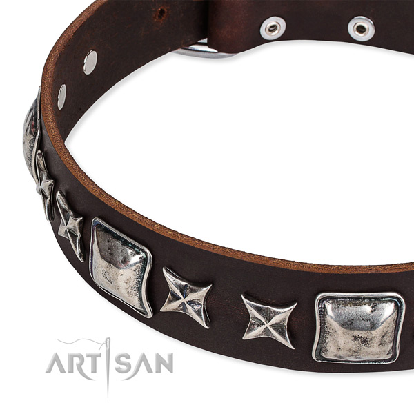 Daily use embellished dog collar of fine quality full grain natural leather
