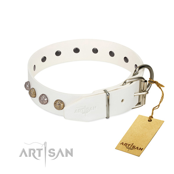 Fancy walking best quality leather dog collar