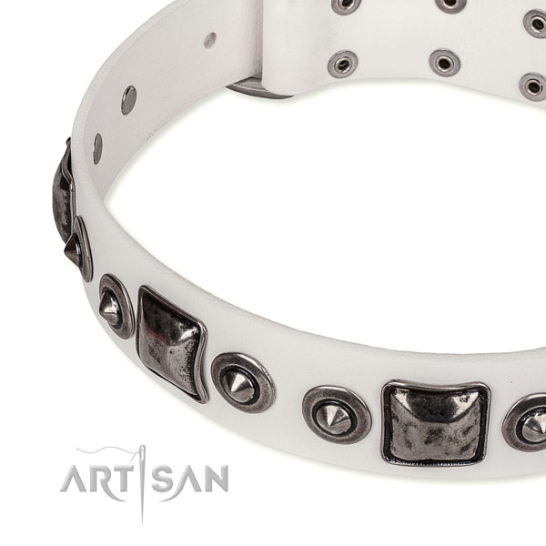 Top notch genuine leather dog collar created for your beautiful dog