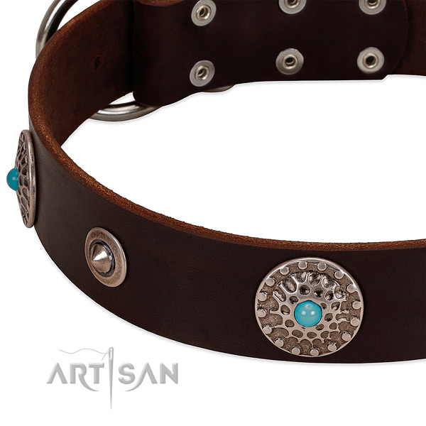 Stunning collar of full grain leather for your handsome doggie