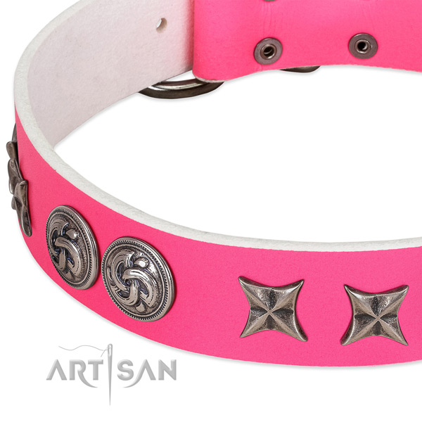 Full grain natural leather collar with stunning adornments for your canine