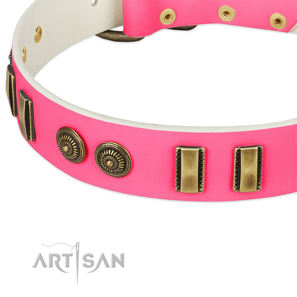 Reliable embellishments on full grain genuine leather dog collar for your dog
