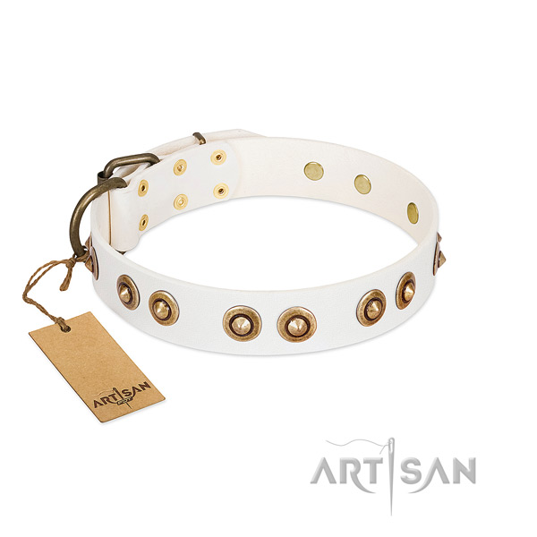 Decorated full grain natural leather collar for your canine