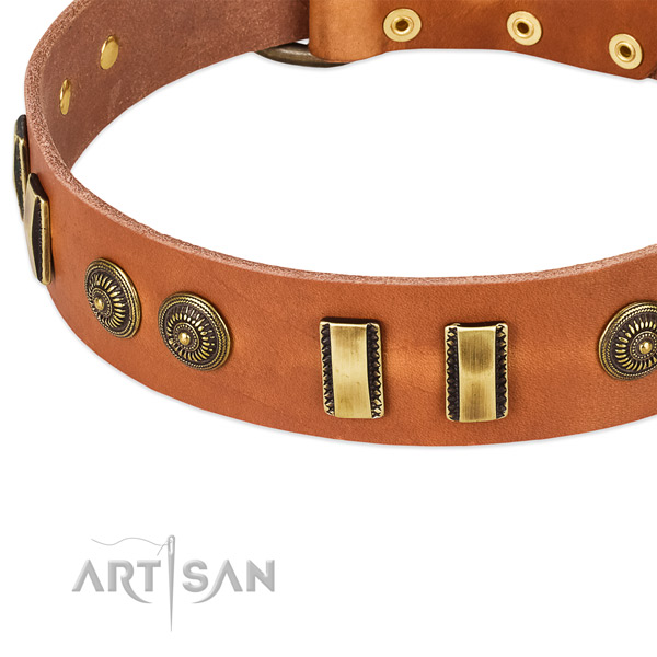 Durable embellishments on leather dog collar for your four-legged friend
