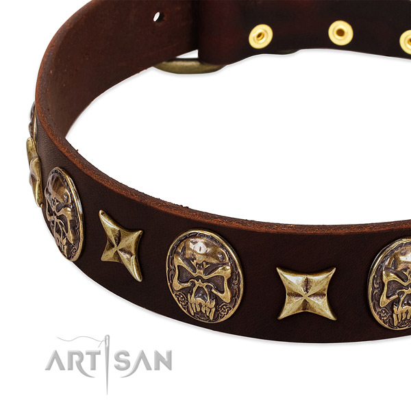 Strong fittings on leather dog collar for your four-legged friend