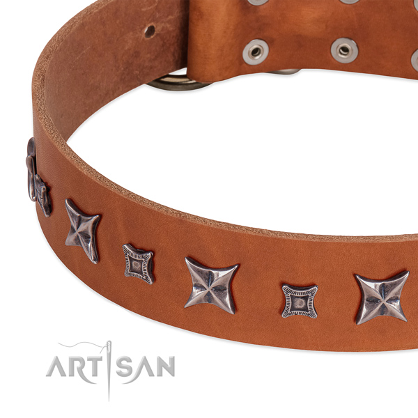 Incredible genuine leather collar for your lovely dog
