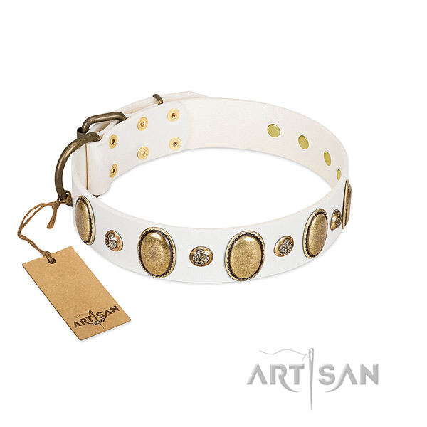 Natural leather dog collar of reliable material with fashionable adornments