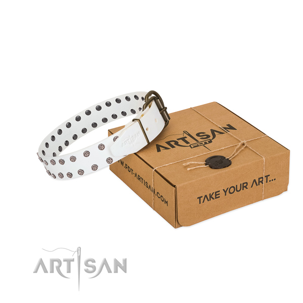 Top notch full grain genuine leather dog collar with studs for your handsome pet