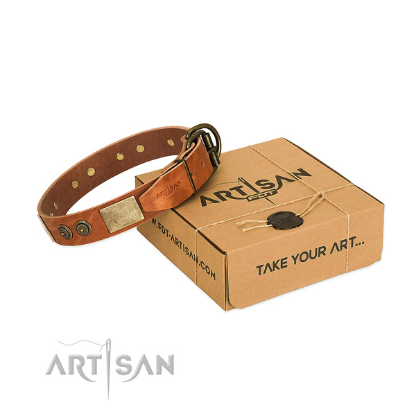 Durable buckle on genuine leather dog collar for everyday walking