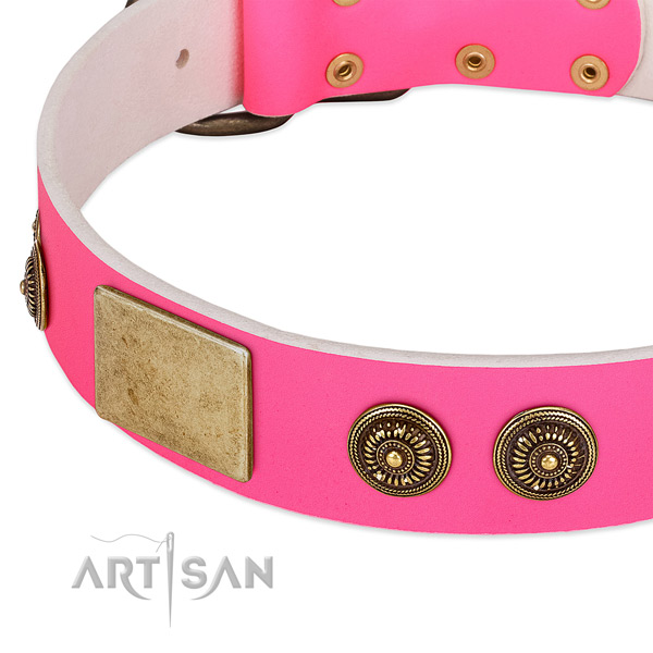 Designer dog collar made for your beautiful doggie