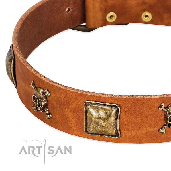 Exquisite full grain natural leather dog collar with corrosion proof studs