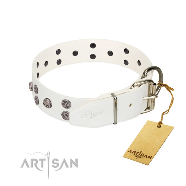 Flexible full grain leather dog collar with adornments for comfortable wearing