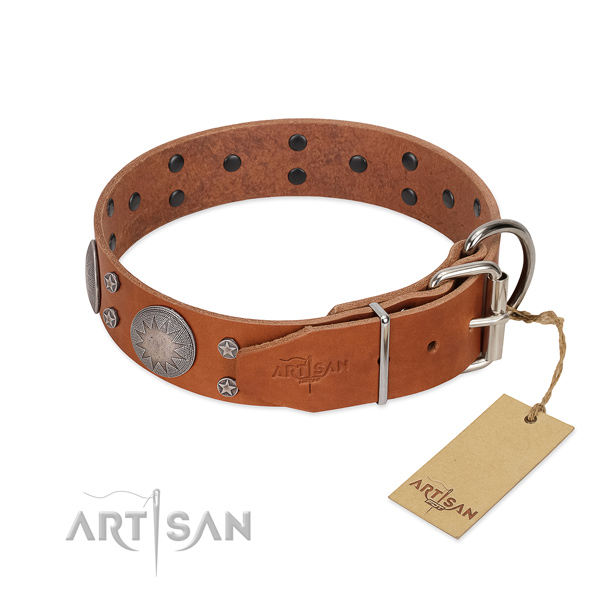 Strong buckle on full grain leather dog collar for fancy walking
