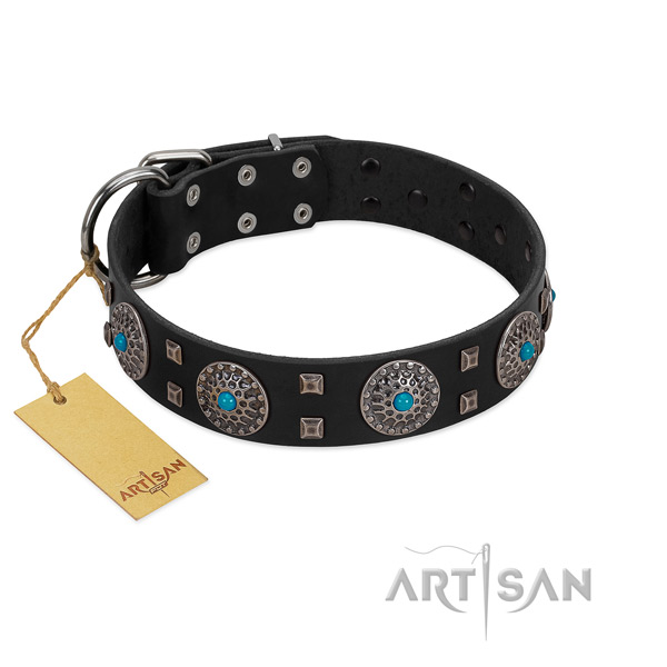 Stylish walking full grain genuine leather dog collar with impressive decorations