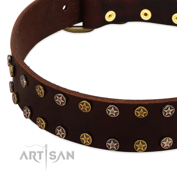 Comfy wearing full grain natural leather dog collar with inimitable studs