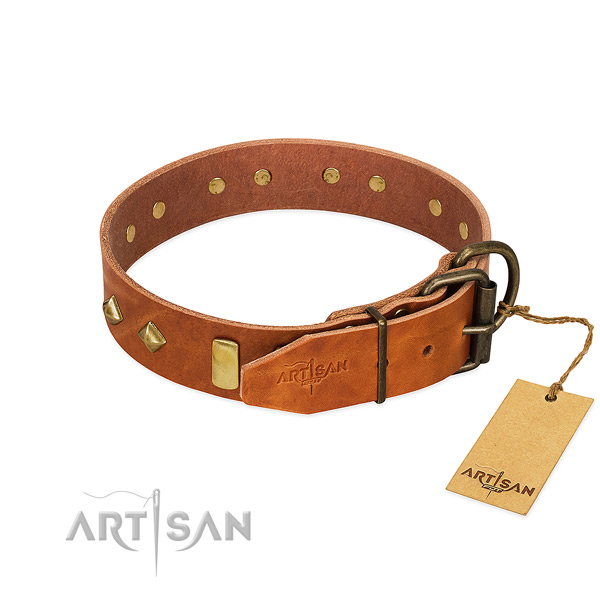 Reliable leather dog collar with rust resistant D-ring