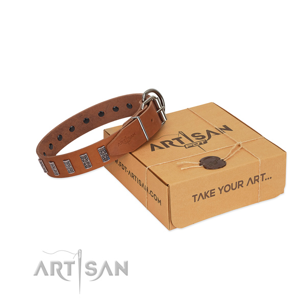 Rust resistant D-ring on leather dog collar for daily walking your doggie
