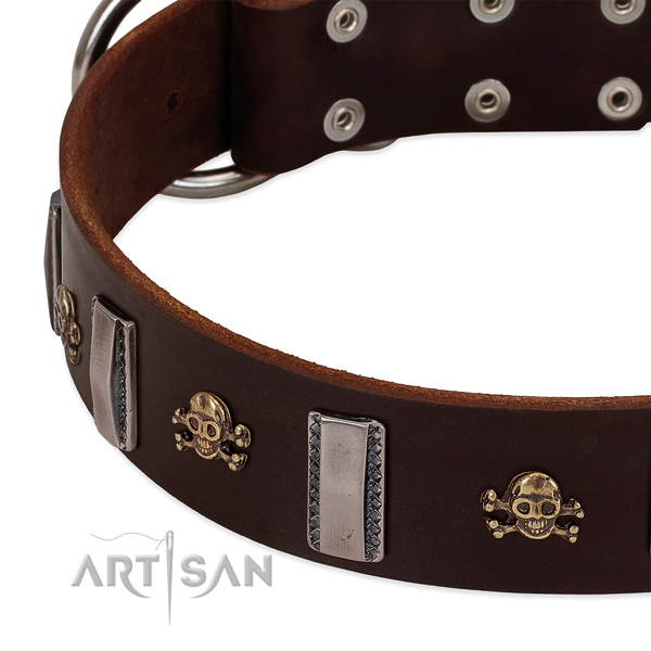 Stunning dog collar of full grain genuine leather with embellishments