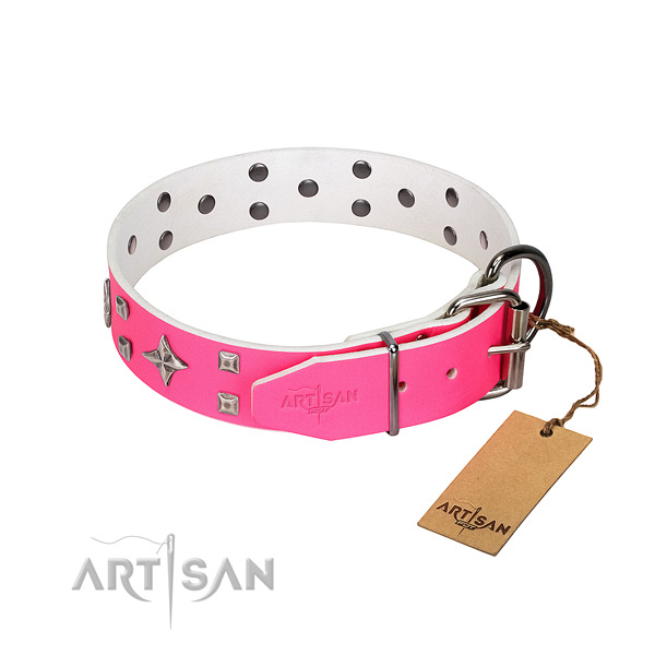 Natural leather dog collar with impressive studs