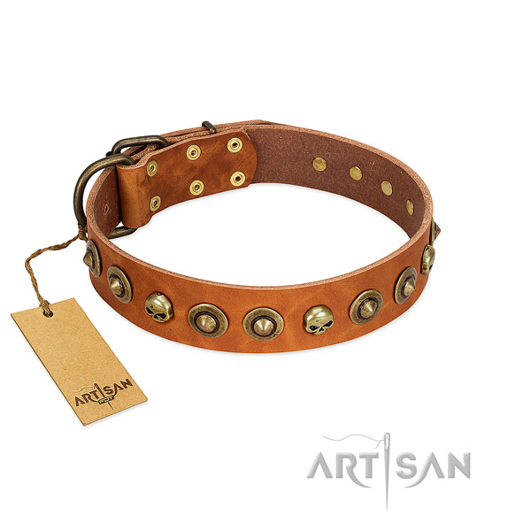 Leather collar with impressive decorations for your dog