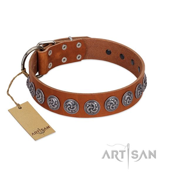 Top notch natural leather dog collar for your handsome doggie