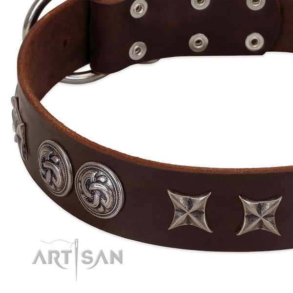 Natural leather collar with top notch adornments for your pet