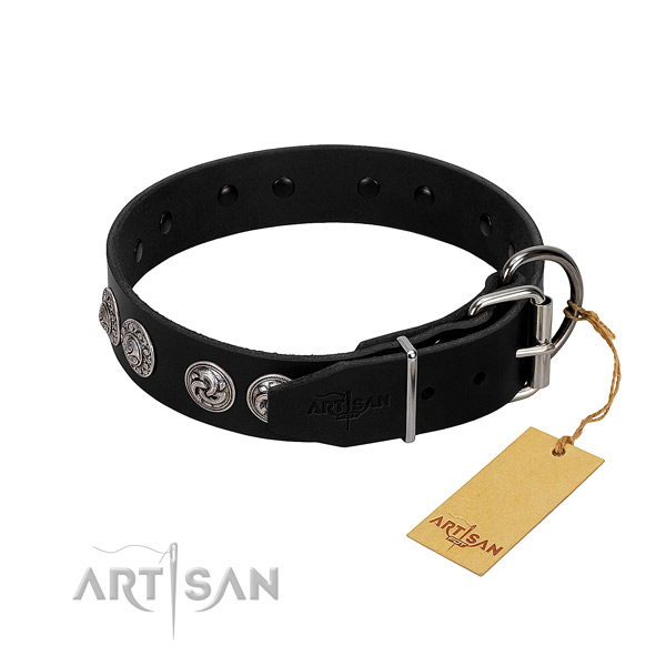 Exceptional full grain genuine leather collar for your doggie stylish walking