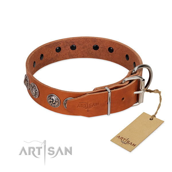 Incredible natural genuine leather collar for your doggie walking