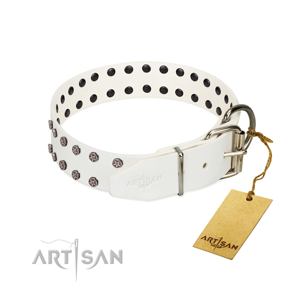 Rust resistant buckle on genuine leather dog collar for basic training